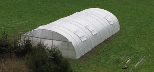 landwirtschaft12